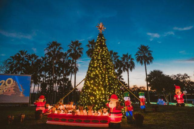 20181215 Palmhust Christmas